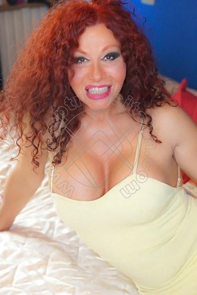 Aurelia REGGIO EMILIA 3920707704